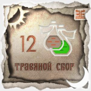 Сбор № 12, применяемый для лечения гастроэнтероколита