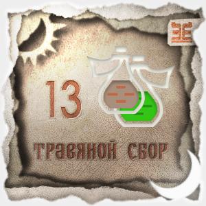 Сбор № 13, применяемый для лечения гастроэнтероколита
