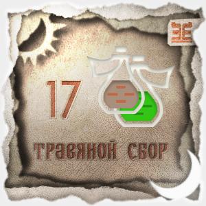 Сбор № 17, применяемый для лечения поноса