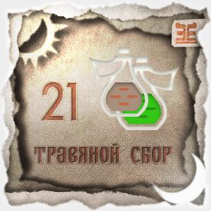 Сбор № 21, применяемый для лечения гепатопатии