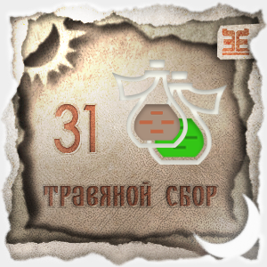 Сбор № 31, применяемый для лечения желчно-каменной болезни