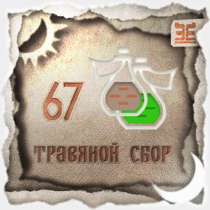 Сбор № 67, применяемый для лечения гастрита