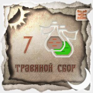 Сбор № 7, применяемый для лечения вздутия живота и изжоги