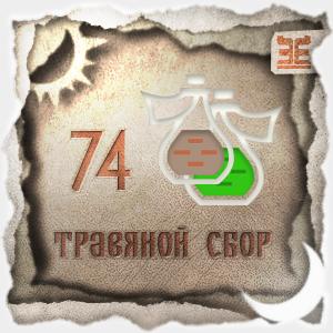 Сбор № 74, применяемый для лечения бронхита