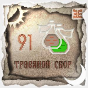 Сбор № 91, применяемый для лечения трахеобронхита
