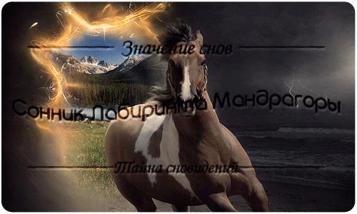 Сонник Лошадь к чему снится Лошадь во сне видеть